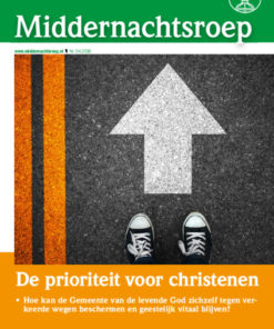 thumbnail of MNR_NL_2016-04_web