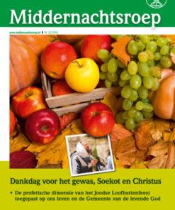 thumbnail of mnr_nl_2016-10_web
